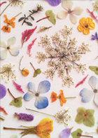 CARD BLANK FLOWER COLLAGE