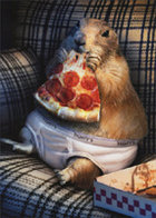 CARD LIVIN THE DREAM PRAIRIE DOG WITH PIZZA