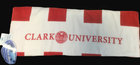 "TOWEL BEACH & BATH 30""X60"" SEAL CLARK UNIV"