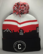 HAT BEANIE WITH POM SKYLINE